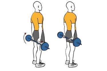 Flexión de muñecas con barra en la espalda