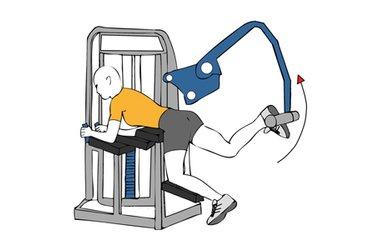 Extensión de cadera atrás en maquina