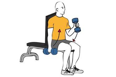 Curl de biceps alterno con mancuernas sentado agarre martillo