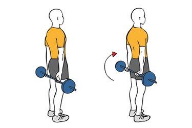 Flexión de antebrazos con la barra en la espalda