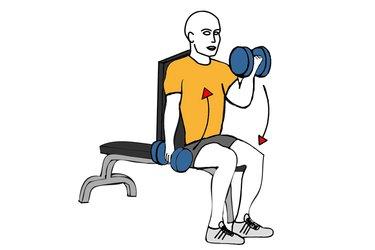 Curl de biceps alterno sentado con mancuernas con giro