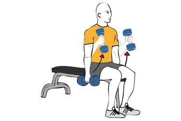 Curl de biceps con mancuernas sentado agarre tipo martillo