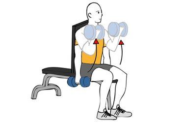 Curl de biceps con mancuernas sentado con giro