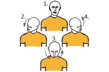 Circunducción de cabeza 180 grados
