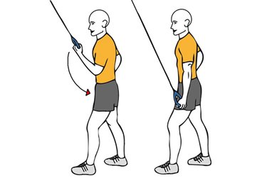 Extensión de triceps agarre supinación a una mano cable-polea