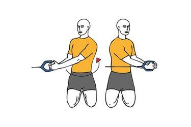 Rotación de tronco con cable-polea de rodillas