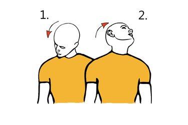 Circunducción diagonal de la cabeza