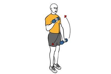 Curl de biceps de pie con mancuernas agarre en pronación