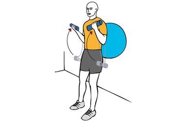 Curl de biceps con mancuernas apoyado en pelota de pilates