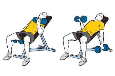Curl de biceps alterno con mancuernas en banco inclinado