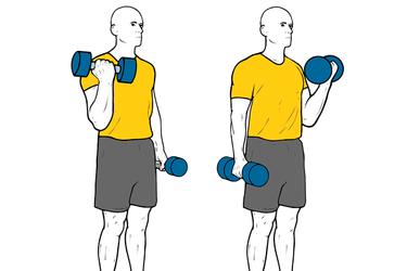Curl de biceps alterno de pie con mancuernas y giro