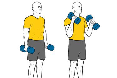 Curl de biceps con mancuernas de pie agarre tipo martillo