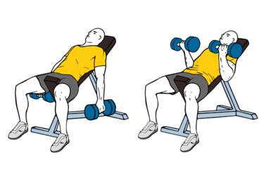 Curl de biceps con mancuernas en banco inclinado