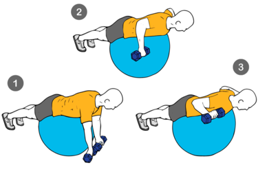 Ejercicio L o Elevación frontal de mancuernas sobre pelota suiza