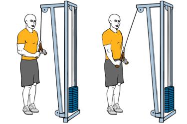 Extensión de triceps con cuerda y cable-polea de pie