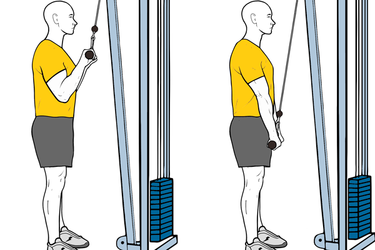 Extensión de triceps con polea