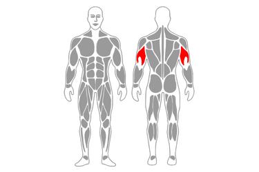 Extensión inversa de tríceps de pie