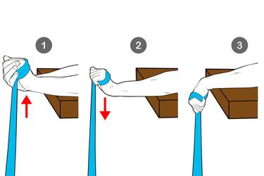 Flexión excéntrica de muñeca con banda elástica