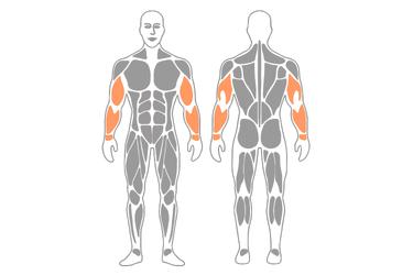 Movilización del nervio cubital : Dorsiflexión de muñeca