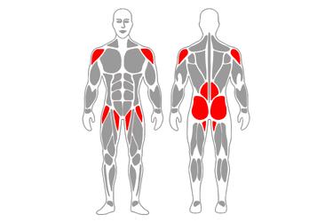 Plancha y flexión de piernas