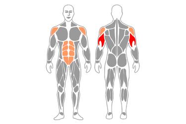 Plancha y extensión de triceps