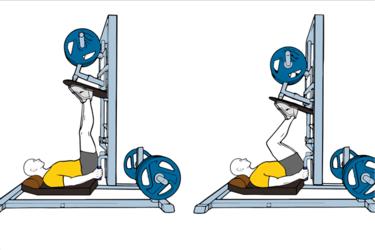 Press vertical de piernas