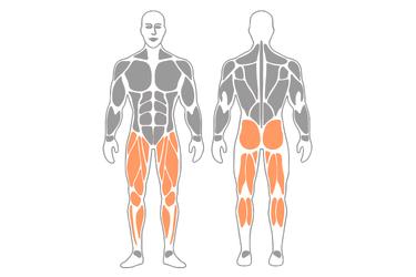Figura doble 8