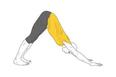 Yoga: Postura del Perro