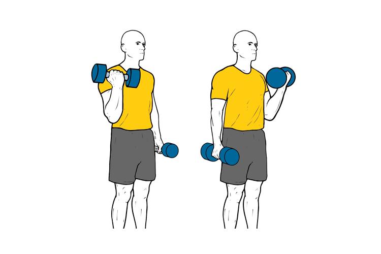 ejercicios de biceps y espalda