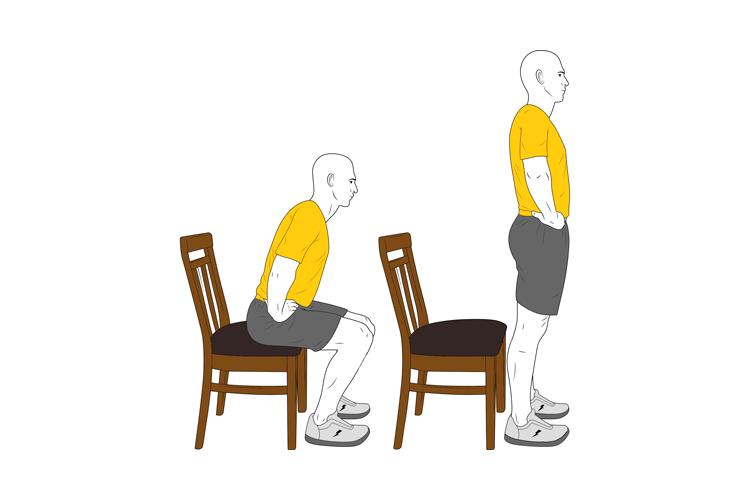 Solo con una silla o banco-Covid-19 :: Entrenamientos, rutinas y ...